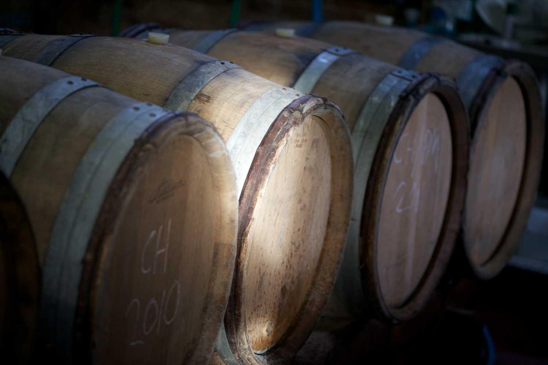 Winery Tour Dorset