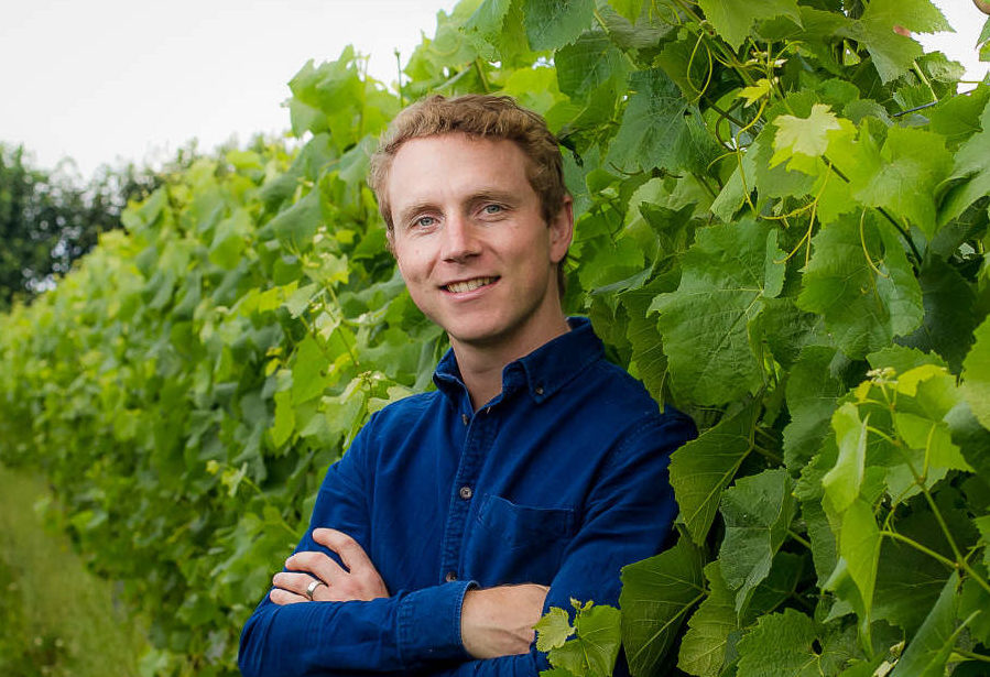 Daniel Ham - Langham Wine Estates