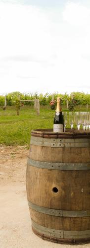 Langham Wine Tours