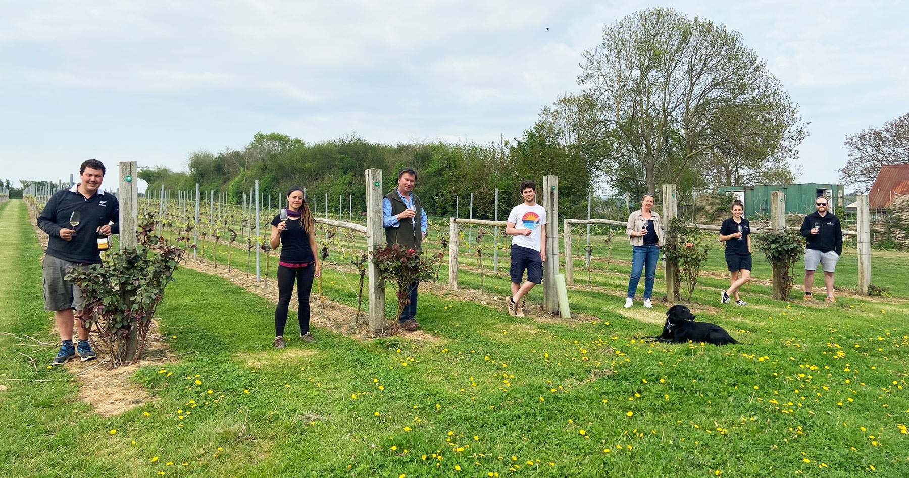 About Langham Wine